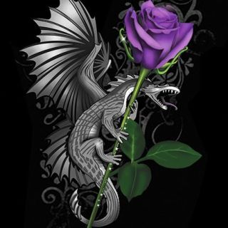 Dragon and Rose