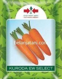 Wortel New Kuroda EW Select, Benih Wortel New Kuroda EW Select, Jual Benih Wortel New Kuroda EW Select, Bibit Wortel New Kuroda EW Select, Belanja Tani, East West Seed, Ewindo