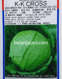KK Cross, Bibit Kol KK Cross, Kol KK Cross, Kubis KK Cross, Benih Kol KK Cross, Jual Kol KK Cross, KK Cross KYS, KK Cross Terbaru, Takii Seed, Takii, Takii Seeds, PT Takii Indonesia, Belanja Tani