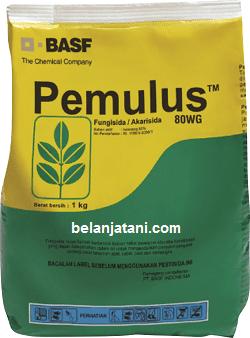 Fungisida Pemulus, Fungisida Pemulus 80 WG, Jual Fungisida Pemulus, Jual Fungisida Pemulus Murah, Fungisida Pemulus 80 WG Terbaru, Fungisida Pemulus 80 WG Terbaik, Fungisida Pemulus Basf, Basf Indonesia, Belanja Tanu