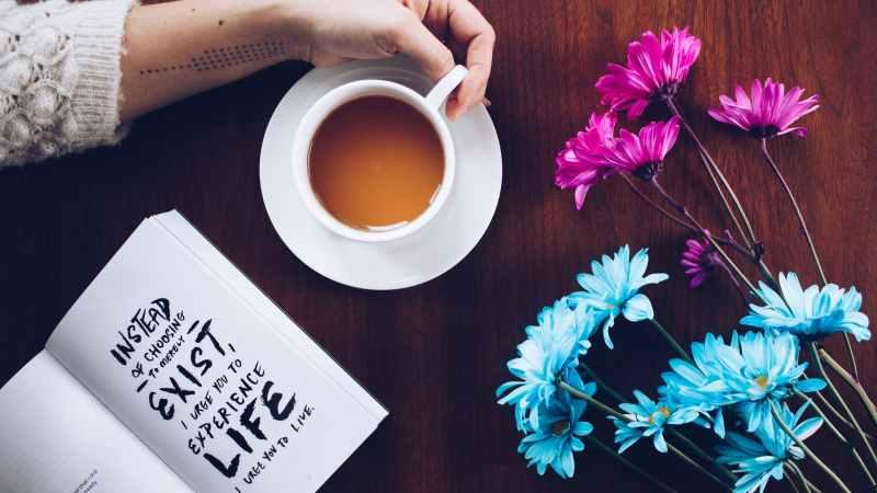 Chá e beleza: 7 dicas para pele e cabelo