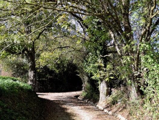 ventenac_bousquet_chapelle26.jpg