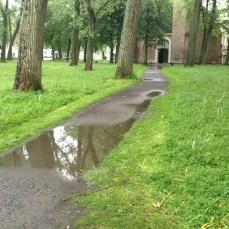 RainDucks2