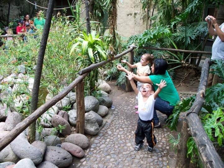 BB Zoo2