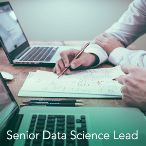 Senior Data Science Lead