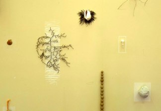 beached_and_bleached-object-wall: found objects from beaches, chalk