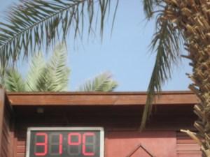 Eilat 18 - 22 may 2014 248