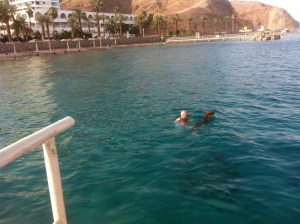 Eilat_kras_fasadi 282