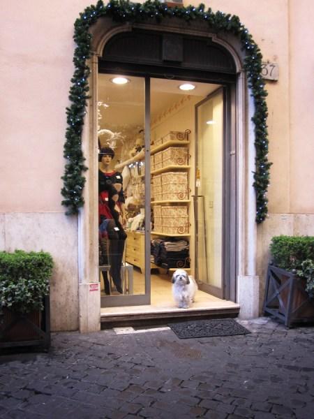 Rom Geschäft
