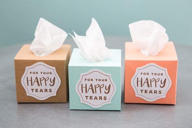 ST-DIY-Mini-Wedding-Tissue-Boxes_0014