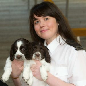 Puppy Trafficking debate at Scottish Parliament Pic shows springer spaniel puppies Wyatt and Serge with Amy Burke from the Scottish SPCA For more details see press release. Pic Peter Devlin