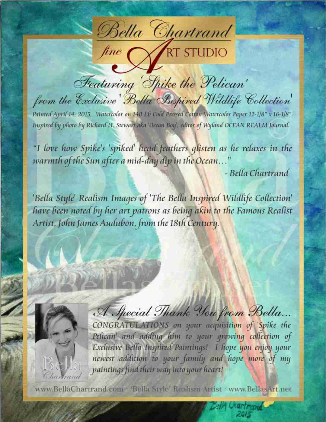 "Congratulations on Buying ""Spike the Pelican"" from Bella Inspired Seascape Collection by Bella Chartrand from Utopia USA"