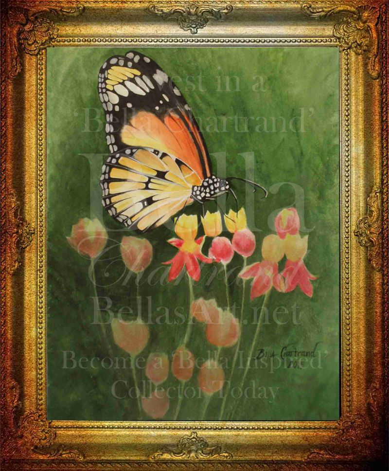 Monarch_Butterfly-Watercolor Painting by Bella Chartrand from Survival Reality TV Show Utopia