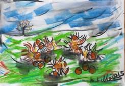DAY 7 Hazelnuts