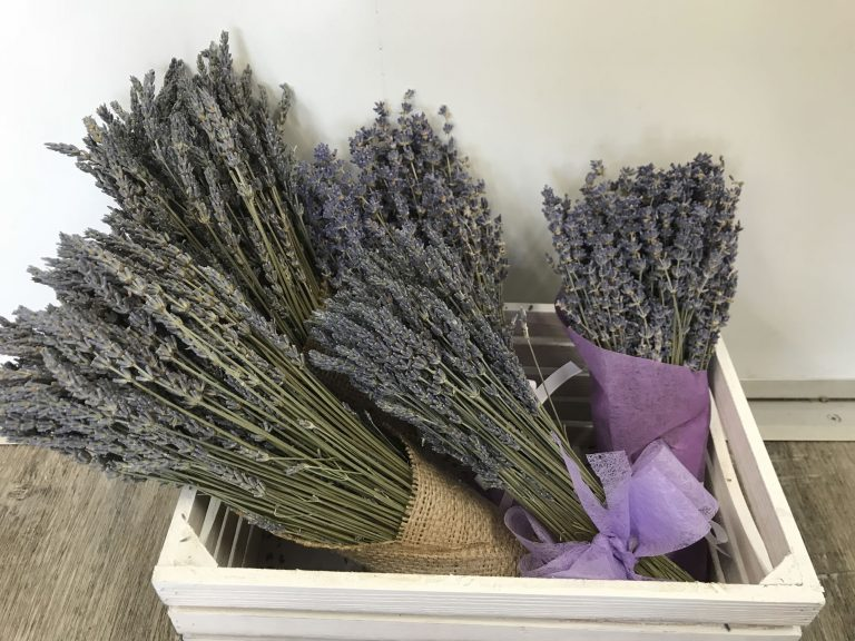 T2 Tea - Teapot - image dried-lavender-bunch-768x576 on https://bellafloralboutique.com.au