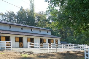 Stalls open to paddocks at Bellamy Brook Stables in Maple Ridge BC