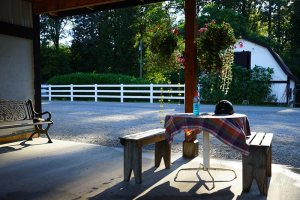 A quiet place to rest after a hard ride at Bellamy Brook Stables, Maple Ridge BC
