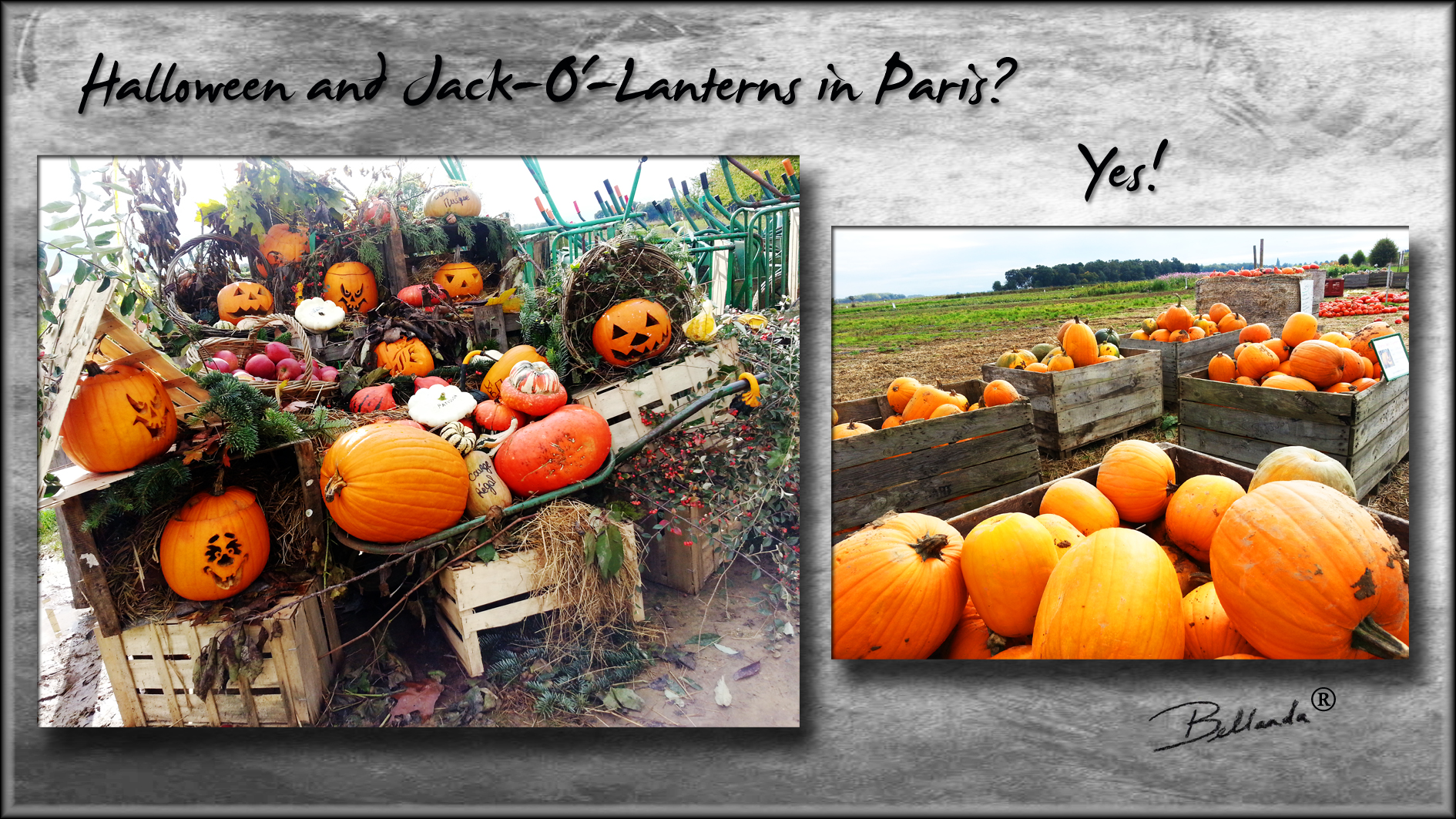 Halloween And Jack O Lanterns In Paris This Expat Says