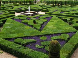 The clear sections of this garden reveal shapes and details that the designer intended to reveal.