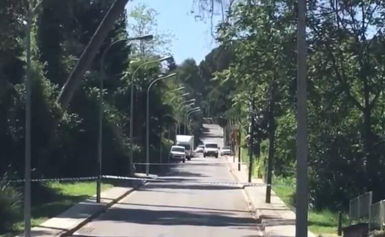 El carrer Mestre Nicolau, tallat per perill de caiguda dels arbres