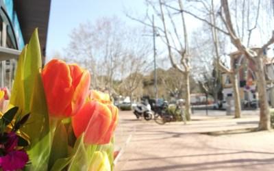 El sol i les temperatures càlides marcaran aquest inici de primavera a Bellaterra
