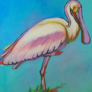 Florida Spoonbill by Pat Whidden-Green