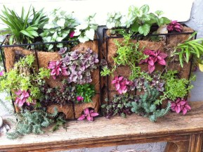 Vertical garden in garden design by Belle About Town