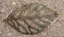 Feuille mince, bronze vieilli, 46x35mm, Emballage de 5 pour 1.75$