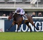 sprint-course-cheval