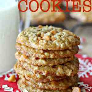 Oatmeal Butterscotch Cookies - Perfectly chewy cookies filled with old-fashioned rolled oats and creamy butterscotch chips. These are perfect for holiday cookie exchanges or any time of the year!
