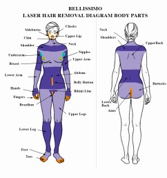 bellisimo diagram soprano laser hair removal [ 1198 x 1240 Pixel ]