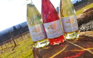 Fanfare Club: Spring Wine Release Party @ Bells Up Winery | Newberg | Oregon | United States