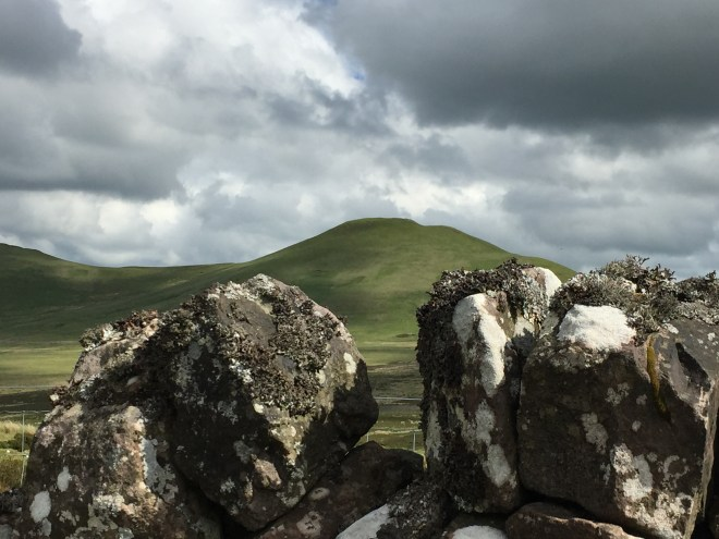 Stone wall, view in Pentland Hills