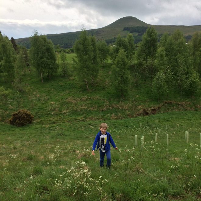 Exploring at Pillars of Hercules camping ground, Fife