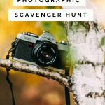 photographic scavenger hunt, camera in a tree