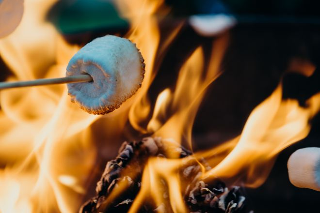 Marshmallow toasting over flames | Photo by Leon Contreras on Unsplash