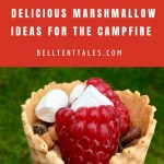 Love s'mores? | Waffle cone with marshmallows, raspberries, and chocolate