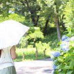 おしゃれな日傘(2018)まとめ!デザインと機能性のおすすめ6選!