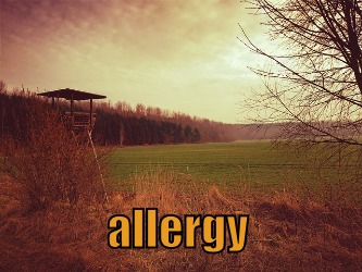 Allergic Problems