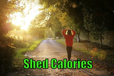 shed calories