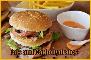 Fats and Carbohydrates