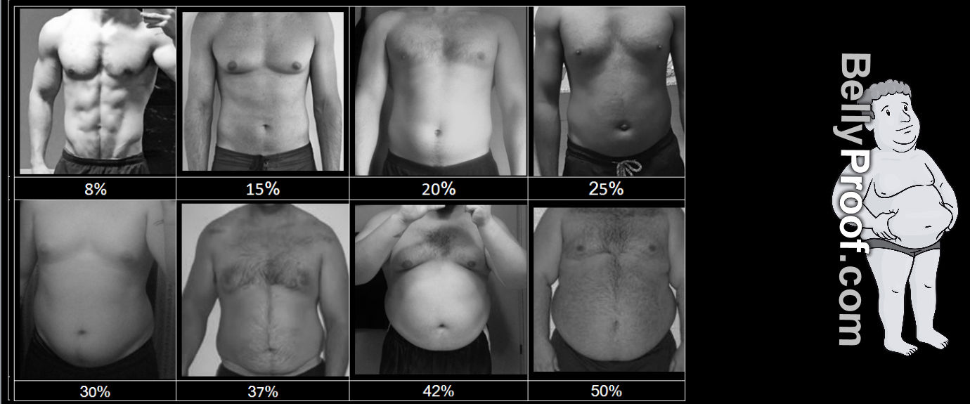 hight resolution of body fat percentage chart men