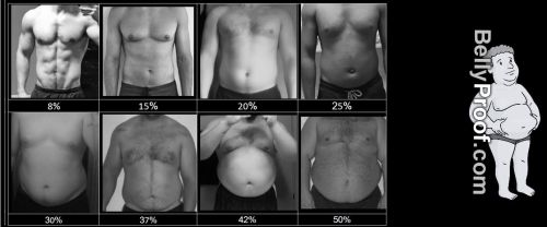 small resolution of body fat percentage chart men