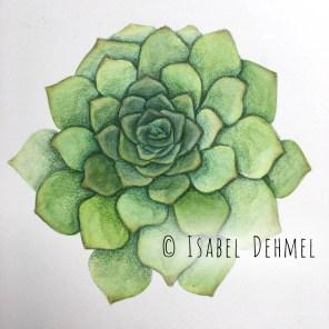 isabeldehmel-succulent-love-i2