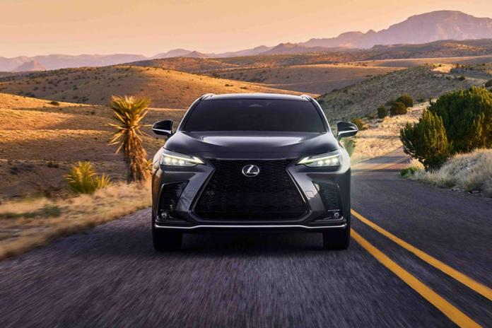 Facts About The 2022 Lexus NX you need to know