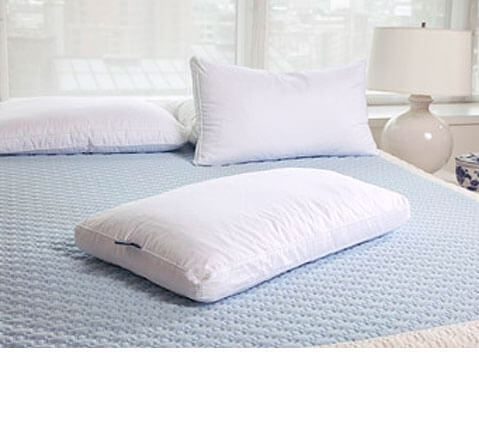 High Profile Pillow  Rejuvenite Celsion Allergy Resistant
