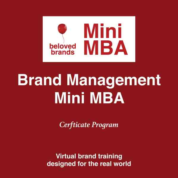 brand management mini mba
