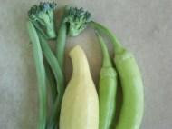 beans, squash, banana pepper, broccoli
