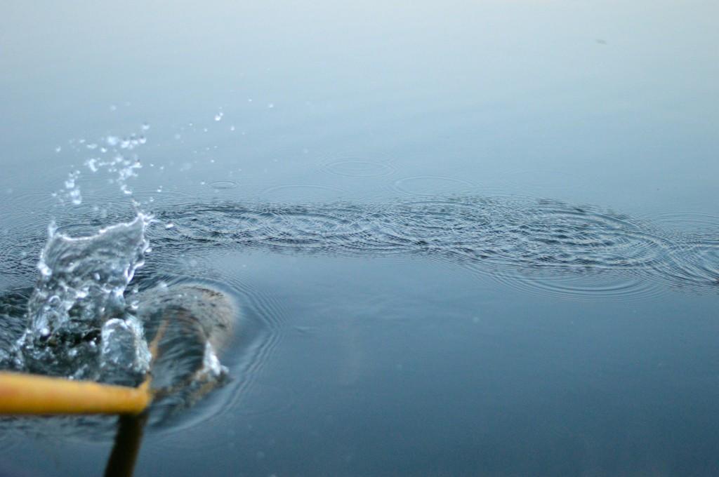 oar archipelago