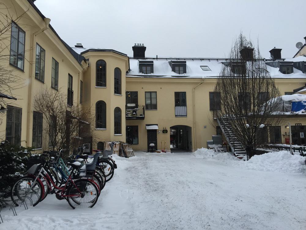 backyard-snow